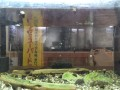 DSCF1035